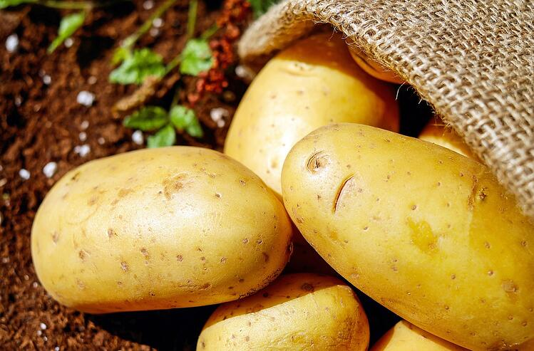 What the History of Potatoes Taught Me about Offers